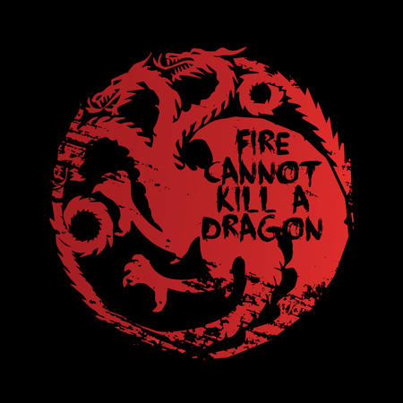 T-SHIRT FIRE CANNOT KILL A DRAGON