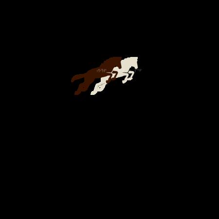 T-SHIRT GIOCALIEN - SKYRIM