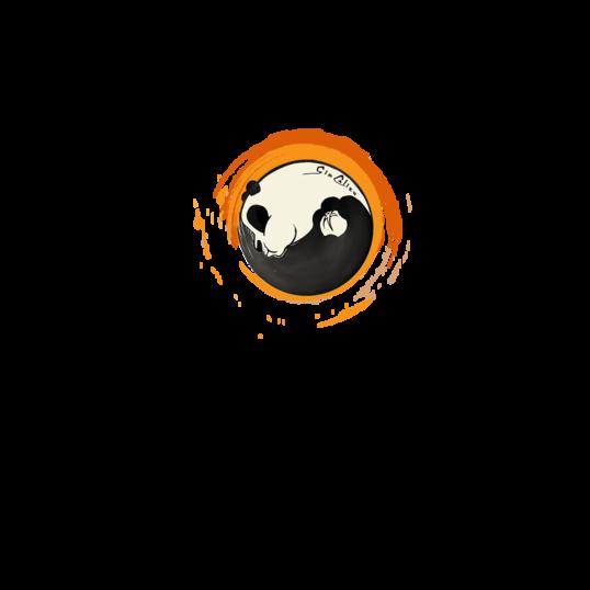 681497 538x538%23 0751 maglietta 3 arancione