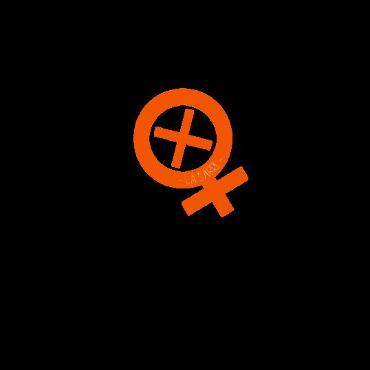 739388 538x538%23 0751 sabri orange thumb1