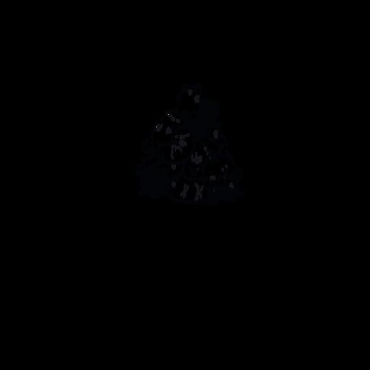756483 538x538%23 0751 felpa piramide tumb